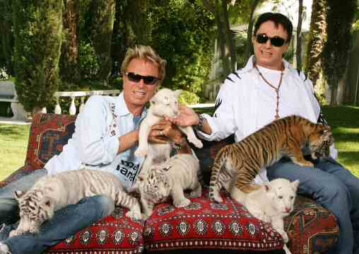 Siegfried Roy Had Kittens Cats Working