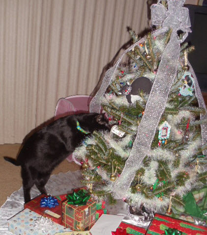 Sniff… sniff… Nope, must not be Christmas yet.